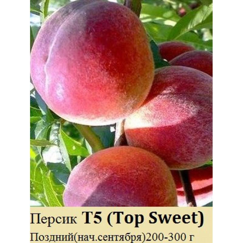Т5 Top Sweet